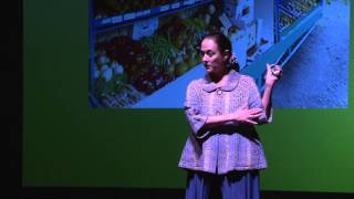 Snap into it, from ordinary moments to extraordinary connections: Holly Stiel at TEDxNapaValley