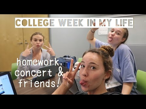 college week-in my life | UNF
