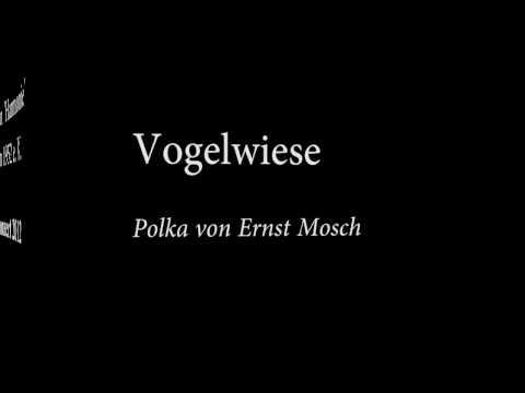 Auf der Vogelwiese - Musikverein Söllingen (Mit Liedtext)