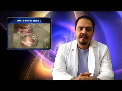 IMSI Yöntemi Nedir ? - Koray YILDIZ - Embriyolog