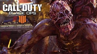 Fighting the COD Blackout Zombies Boss!! - Call of Duty Black Ops 4 Blackout Gameplay