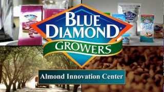 Kacang Almond Slice Import USA Potong Tipis Kemasan Dus