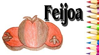 How to Draw Feijoa | Fruit Drawing Easy Step by step | SLD