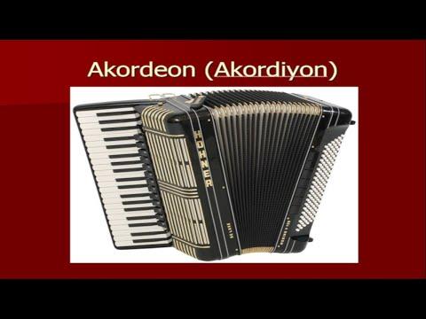 Akordeon (Müzik Aleti) Tanıtımı, İçi, Nasıl Çalışır Ve Çeşitleri