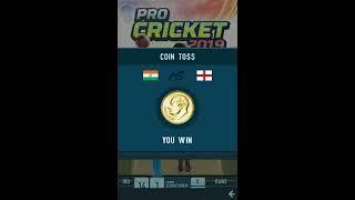 Pro Cricket 2019 [Touchscreen Java Games]