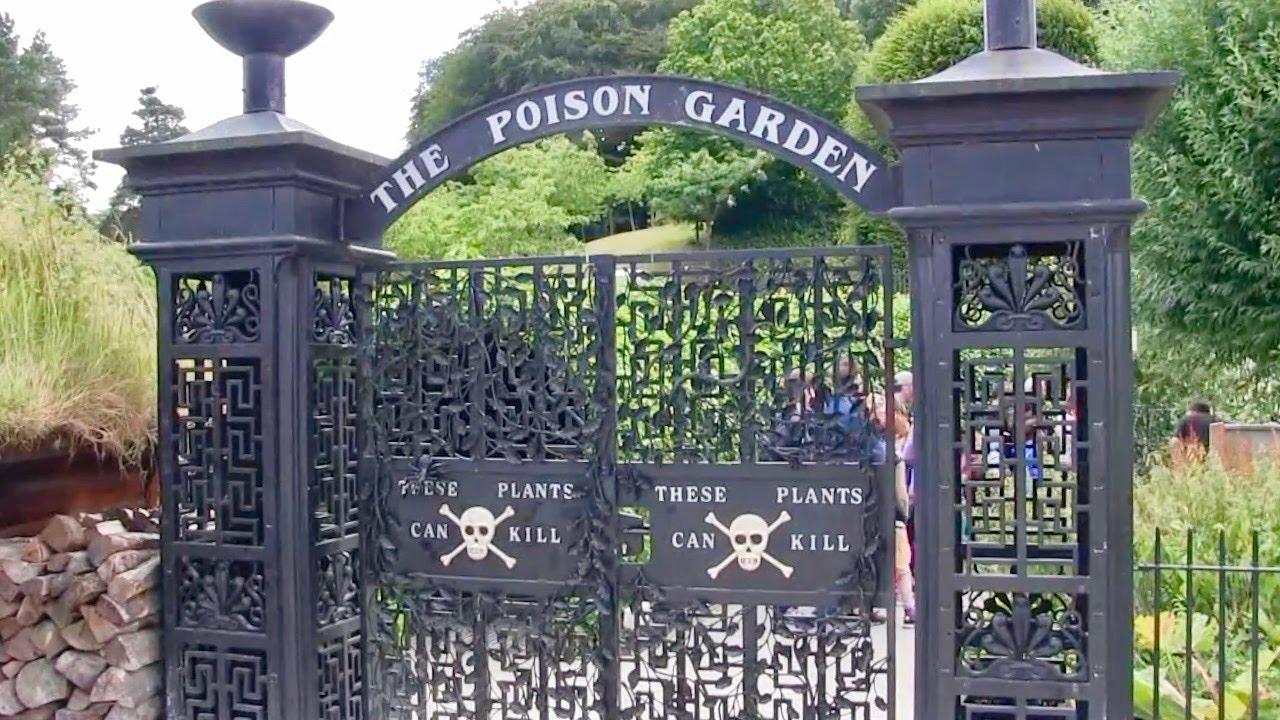 Poison Garden In North England Youtube