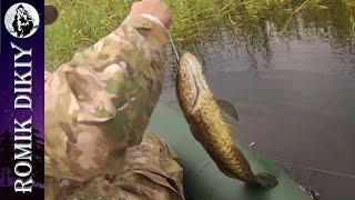 видео Рыбалка и охота | Самоделки | Page 2-10 | Мастер