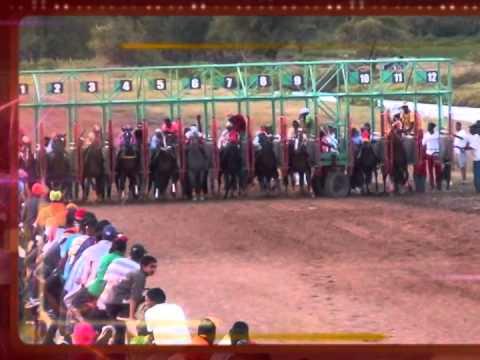 guyana horse racing