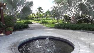 Our Four Seasons Nevis Honeymoon