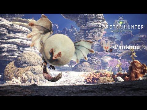 MONSTER HUNTER WORLD: ICEBORNE - Paolumu Hammer Solo #11  