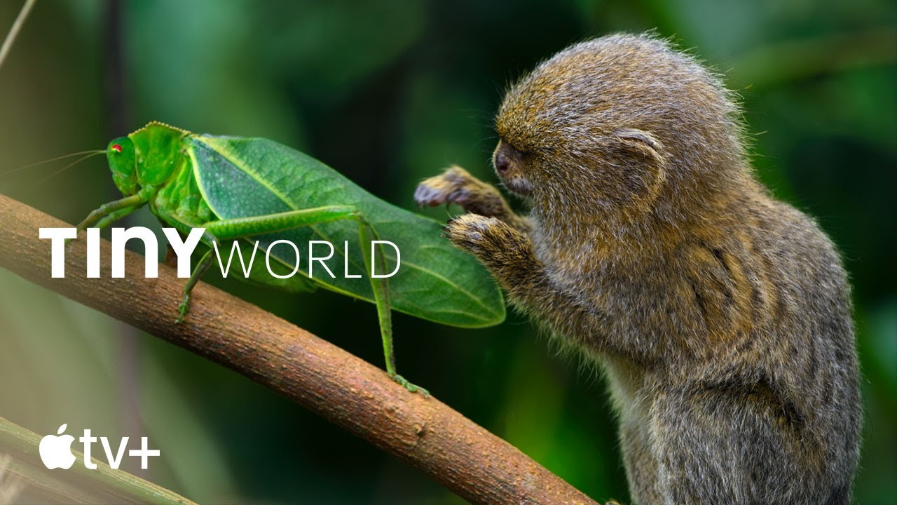 Tiny World — Official Trailer l Apple TV+