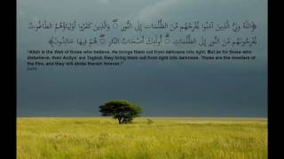 """""""Allah is the Wali (Protector or Guardian) of those who believe."""" (2:257)"""