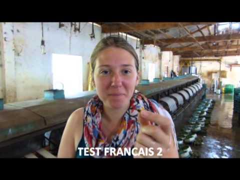 Globe Dreamers : Dégustation de vers à soie (Da Lat - Vietnam)