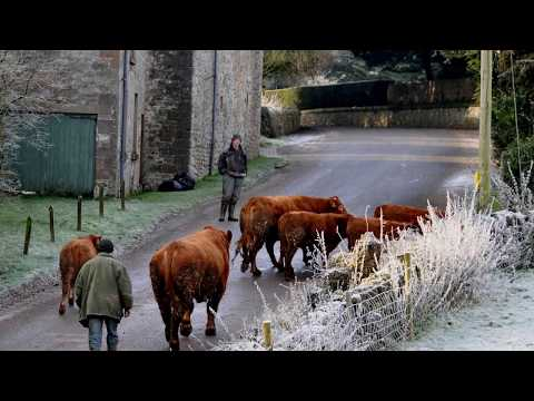 Ralph Vaughan Williams - Five Variants Of Dives & Lazarus (1080p Version)