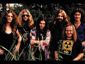 Lynyrd Skynyrd-All i can do is write about it