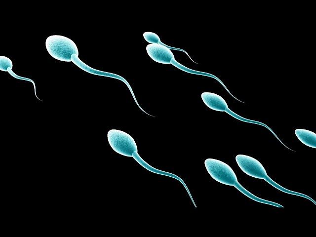 отверстие секс большой член с спермой только