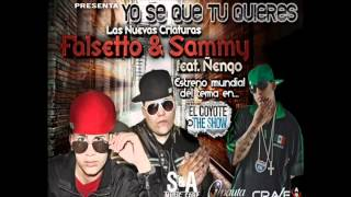 Acapella - Yo Se Que Tu Quieres - Ñengo Flow , Falsetto & Sammy