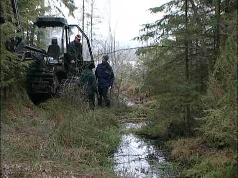 Kraftsamling skog Dikesrensa och Skyddsdika Del 1:2