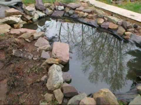 Koi pond cleaning and maintenance service pottstown pa for Koi pond maintenance near me