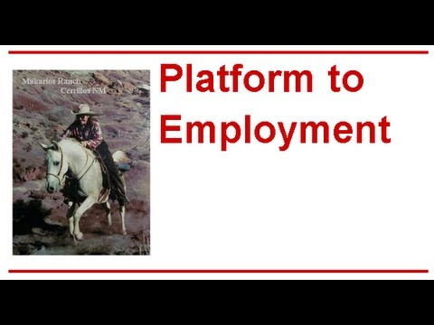 Platform to Employment ROCKS! Platform to Employment! Ways to Improve the Platform to Employment