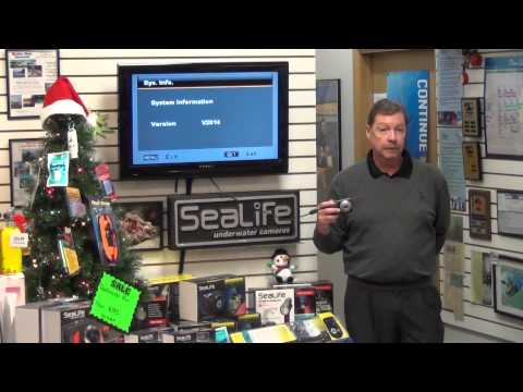 SeaLife Demos | SeaLife Sea Dragon Seminar - Part 3