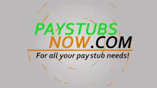 Create Employee Professional Pay Stubs Online