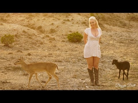Life On the Farm with Dixie the Deer & Friends