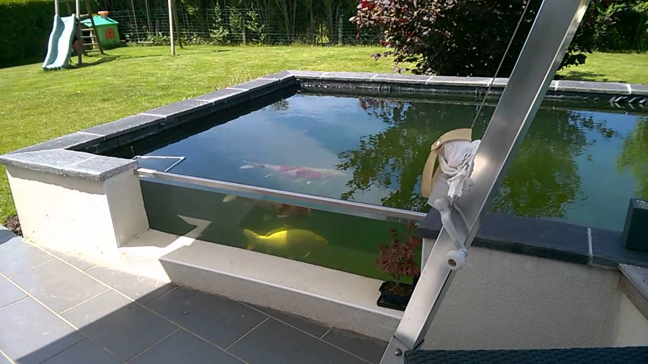 Bassin carpe ko type vivier avec vitre youtube for Carpe koi aquarium 300 litres