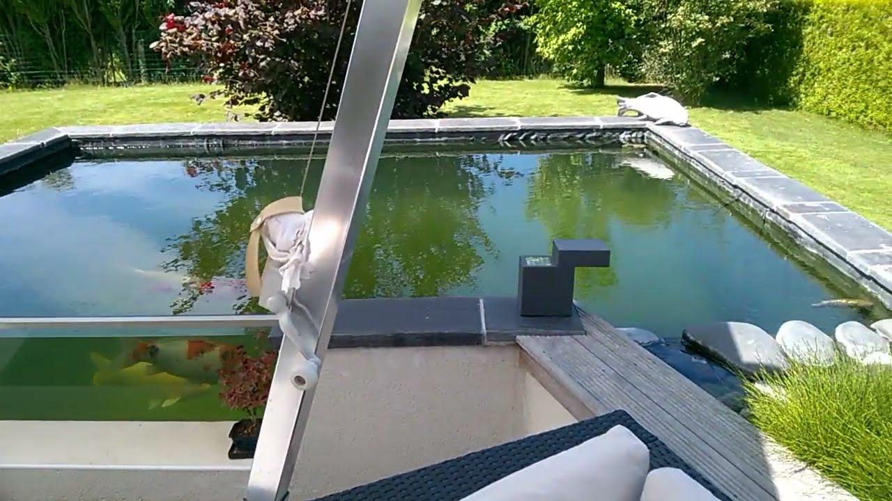 bassin poisson exterieur avec vitre
