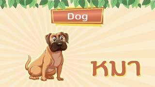 ภาษาอังกฤษเบื้องต้น l เรียนรู้ชื่อสัตว์ ความหมาย ตัวสะกด ชุดที่ 1