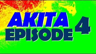 AKITA I WOK AGRESSIF Episode 4
