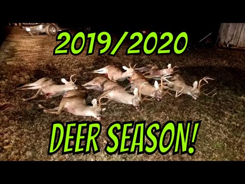 Deer Season 2019