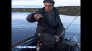 Щучье озеро - местные против москвичей