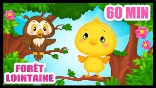 dans la forêt lointaine 60 min de comptines pour bébés titounis