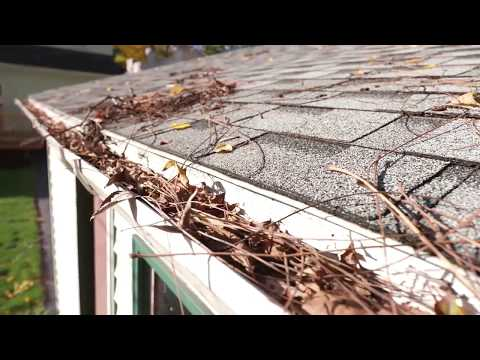 Get quotes from reliable gutter cleaning professionals
