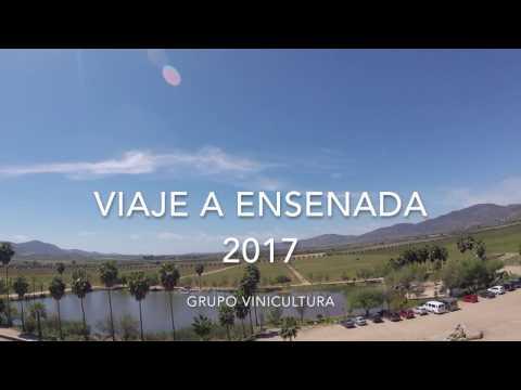 Viaje a Viñedos en Ensenada BC