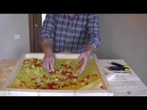 Как сделать сушилку для ягод, грибов, фруктов и овощей