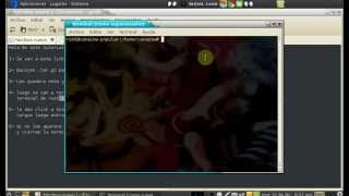 Adobe flash Player Para Canaima ( web cunaguaro)