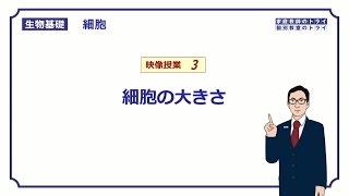 【生物基礎】 細胞3 細胞の大きさ (18分)