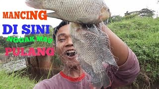 Video Mancing jaring/spring boom net,ikan nya disini banyak banget download MP3, 3GP, MP4, WEBM, AVI, FLV September 2018