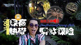 马来西亚槟城升旗山 The Habitat   深夜热带雨林探险Vlog3
