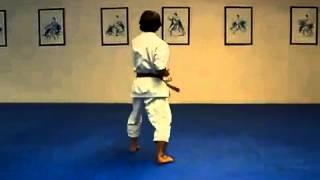 Taikyoku Sandan Shotokan Karate Kata  - KTQD