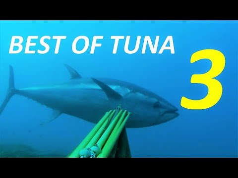 BEST OF TUNA SPEARFISHING VOL 3 - Best shooting compilation Ocean and Mediterranean Sea fishing