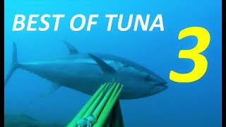 Download Video BEST TUNA SPEARFISHING VOL 3 - Best shooting compilation Ocean and Mediterranean Sea fishing MP3 3GP MP4