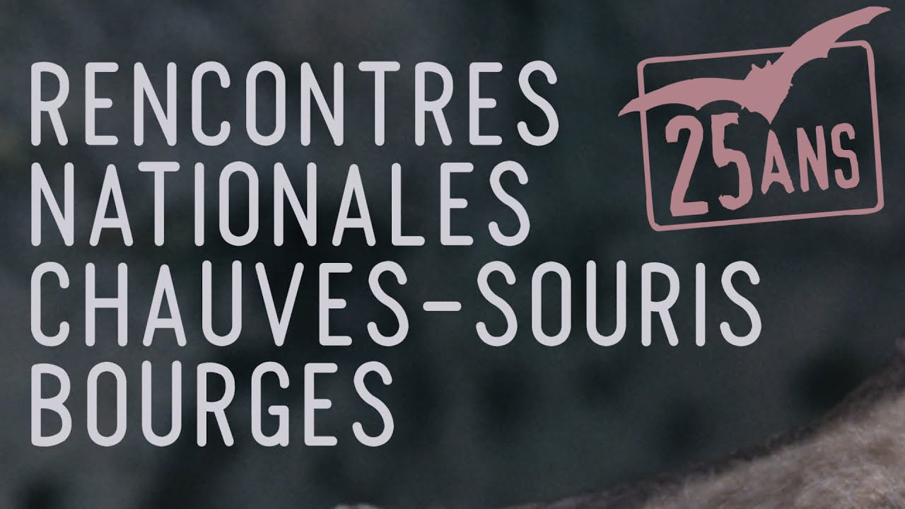 Rencontre a bourges