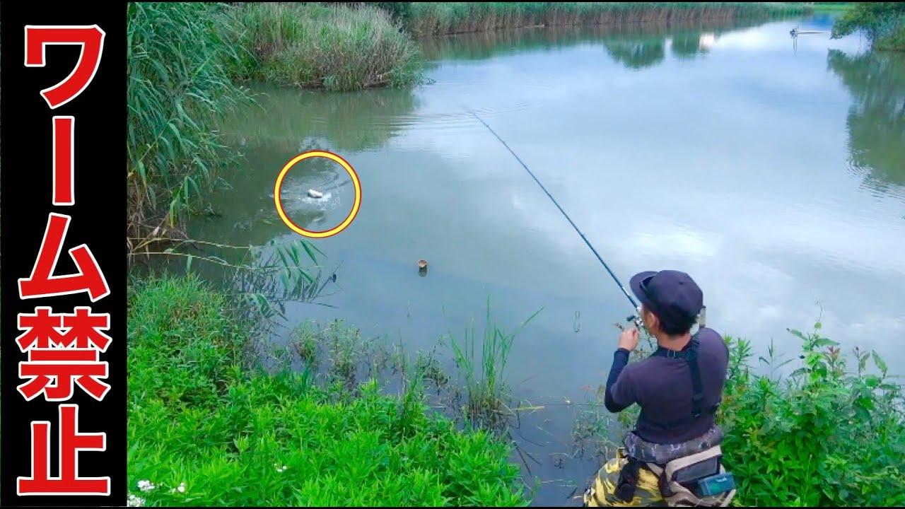 【バス釣り】メジャーエリアでハードルアー縛りやってみた結果…予想以上の反応が。