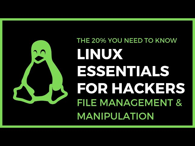 Linux Essentials For Hackers - #3 - File Management & Manipulation