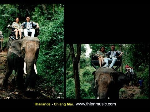 thaïlande-chiang-mai