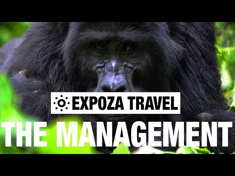 Natural Parks: The Management (Africa) Vacation Travel Video Guide