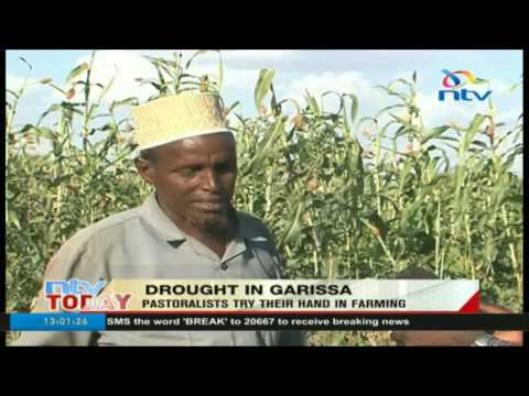 Drought in Garissa: Pastoralists try their hand in farming